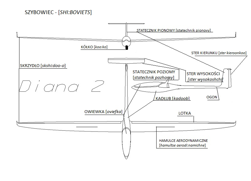 Glider parts in Polish